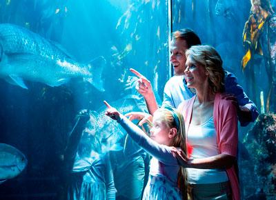 Entrada Aquarium de Roquetas de Mar
