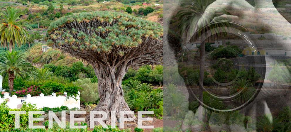Fotografias de Tenerife