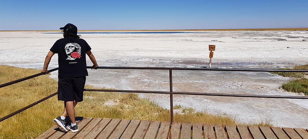 Como es el desierto de Atacama